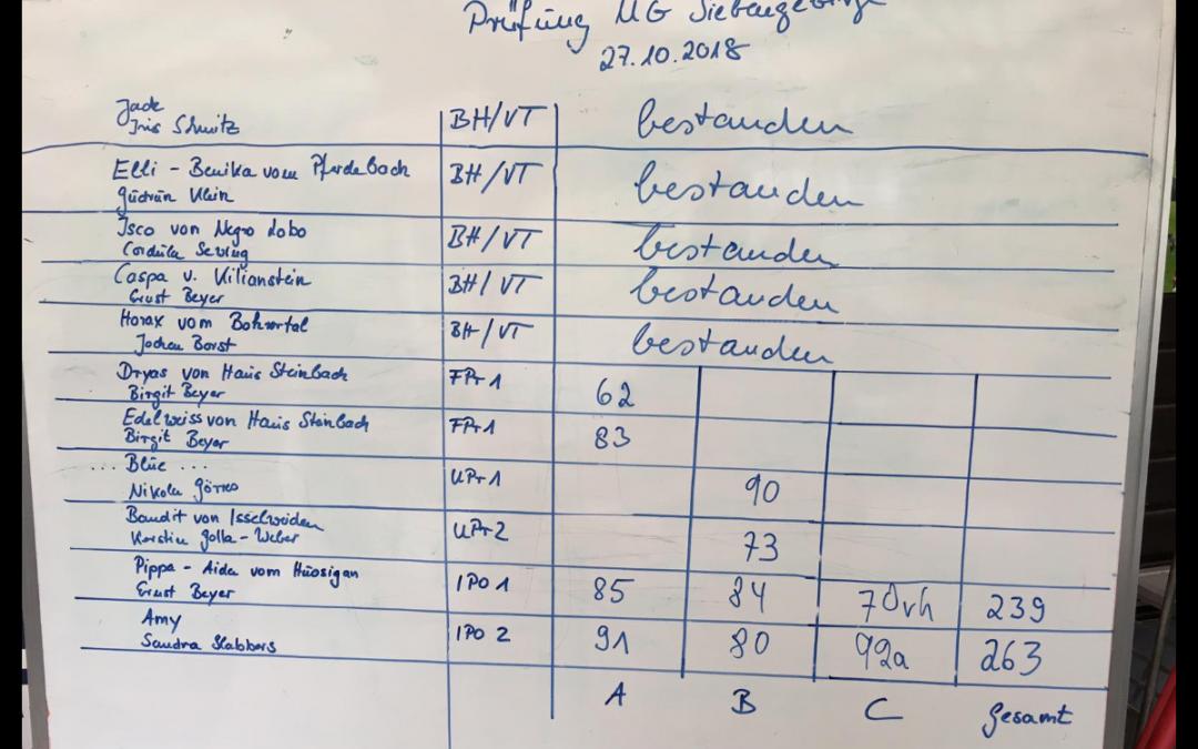 Leistungsprüfung der Übungsgruppe Siebengebirge am 27.10.2018